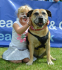 Battersea Dogs & Cats Home Old Windsor Fun Day