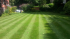 Top tips for caring for you lawn