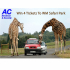 AC Electrical Children's Safari Park Competition