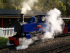 Perrygrove Railway Steam Gala & Family Fun Day