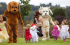 Atherton Guide Dogs Family Fun Day