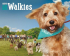 RSPCA Big Walkies