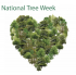 National Tree Week  28th November - 6th December