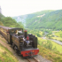 Vale Of Rheidol Rail - Summer Evening Excursions
