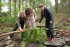 Family Volunteering at Grizedale Forest