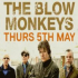 The Blow Monkeys Live!