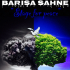 Barisa Sahne - Stage For Peace