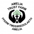 June Spring Fair at Amelia Trust Farm
