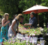 Specialist Plant Fair at at Battlefield 1403