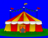 Summer Circus at Great Amwell