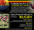 Cardigan Rugby Club - Junior Section