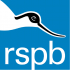 RSPB - Brilliant bats, marvellous moths and ghostly goatsuckers