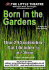 Born In The Gardens by Peter Nichols