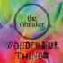 The Whitaker Wonderful Things