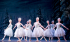 Encore Screening: The Nutcracker