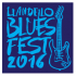 Llandeilo Blues Fest