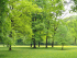 Hertfordshire Health Walks - Cassiobury Park