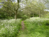 Hertfordshire Health Walks - South Oxhey