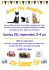 St Albans Cats Protection Homing Day