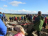 Highland Archaeology Festival