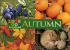 Love Food Festival: Autumn