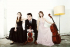 Sunday Concert: Delta Piano Trio