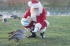 Feed the Birds with Santa