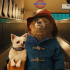 TOM's Film Club: Paddington (2014)