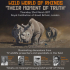 Wild World of Rhinos - Their Moment of Truth