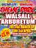 Fun Fair at Walsall Arboretum
