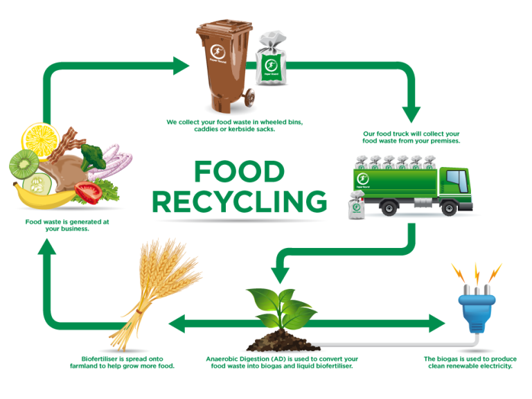brighton paper round food recycling infographic ck png