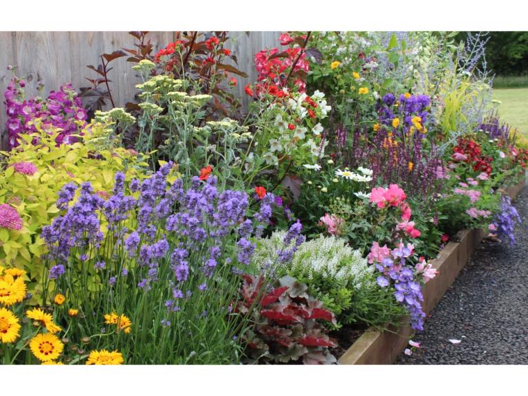 Garden On A Roll Plant And Flower Borders In Welwyn Garden City