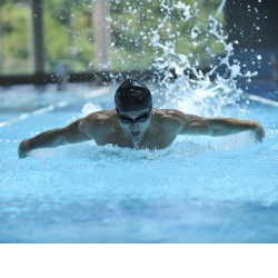 Autumn events with Fins Swimming Club
