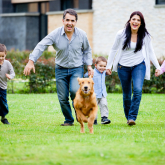 Dog Insurance - what do you think?