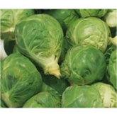 Tasty Christmas Sprout Recipes