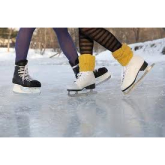 St Neots Ice Rink - A real success