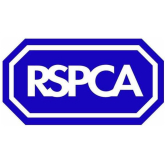 RSPCA spend of £326,00 of supporter's money under the spotlight