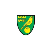 St Neots Town FC in Partnership with Norwich City FC
