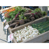 Farmers Markets in the Guildford Area