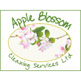 Affordable window cleaning service @Apple Blossom