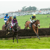 POINT-TO-POINT PREVIEW - DINGLEY, SATURDAY MAY 18