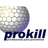 Pest Control in Telford and Shropshire | Bees Ants Flies Rats Wasps