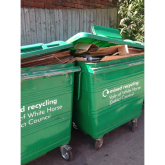 Ten Green Bottles-More Recycling Bins Needed in Henley