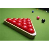 Disability Snooker Open Snooker Championships 2013