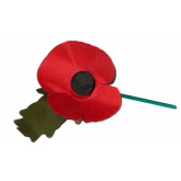 Remembrance Sunday; Telford wear your poppy with pride
