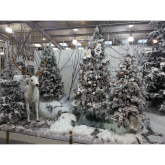 Christmas all wrapped up at Newbank Garden Centre