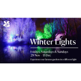 See Anglesey Abbey in a whole different light this year at the Winter Lights Festival