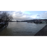 Henley Businesses keeping their Heads Above Water