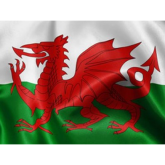 Celebrate St David's Day in Cardiff