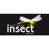 Celebrate National Insect Week 23-29th June......Turn Your Garden Into A Bug Haven!